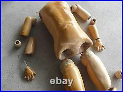 BIG Vintage 1920s German Composition Jointed Doll Body Arms Legs 17 1/2 Tall